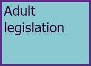 Adults Level 4 Adult Legislation
