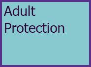 Adults Level 4 Adult Protection