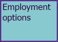 Adults Level 4 Employment Options
