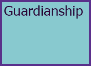 Adults Level 4 Guardianship
