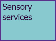 Adults Level 4 Sensory Services