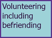Adults Level 5 Volunteering inc Befriending