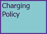Adults Level 4 Charging Policy